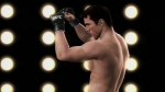 Sonnen v Bisping fight simulation video